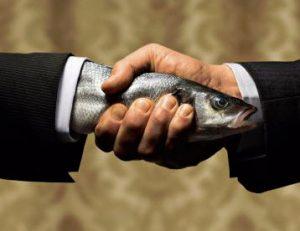 Döglött hal vagy sárgarépa?